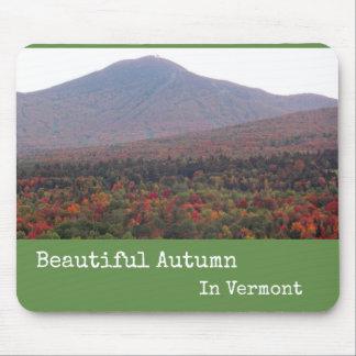 Outono bonito de Mousepad em Vermont