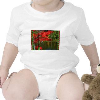 Outono canadense bonito:  Os cumprimentos, abençoa Macacãozinho Para Bebê