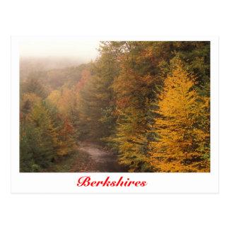 Outono do ribeiro do moinho, córrego de Berkshires Cartão Postal