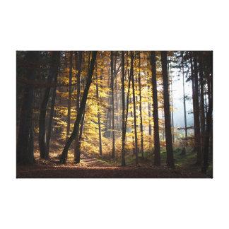 Outono nas madeiras impressão em tela