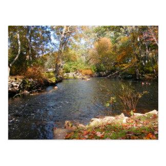 Outono no cartão do ~ de Nova Inglaterra 5