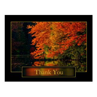 Outono no obrigado de Nova Inglaterra você Cartão Postal