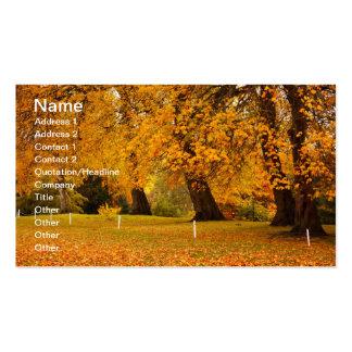 Outono no parque cartão de visita