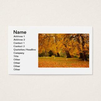 Outono no parque cartão de visitas