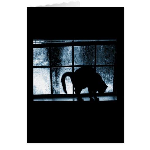 Outubro rega a silhueta do gato no azul da janela  cartões