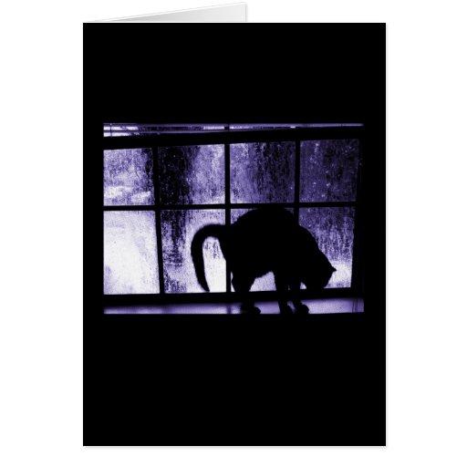 Outubro rega a silhueta do gato no índigo da janel cartões