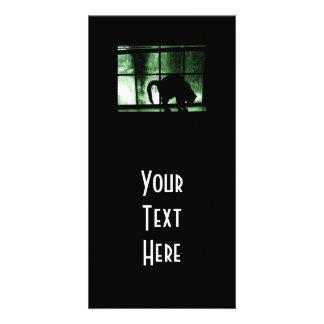 Outubro rega a silhueta do gato no verde da janela cartões com foto personalizados