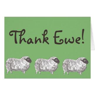 Ovelha do obrigado! Cartão dos carneiros