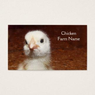 Ovo da galinha do bebê ou fazenda de galinha cartão de visitas