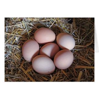 Ovos ar livre da galinha cartão comemorativo