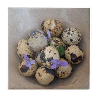 Ovos de codorniz & flores 7533