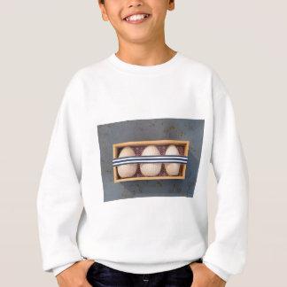 Ovos de madeira em uma caixa agasalho
