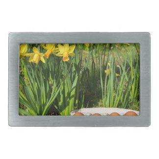 Ovos na caixa na grama com daffodils amarelos