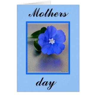 P9110562ED_490_x_600_, mães, dia Cartão Comemorativo