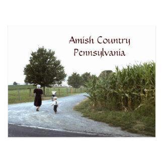 PA de Pensilvânia do país de Amish Cartão Postal