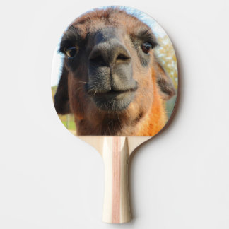 Pá de Pong do sibilo da alpaca Raquete De Tênis De Mesa