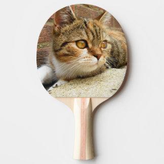 Pá do gato raquete para tênis de mesa