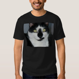 Paco o gatinho t-shirt