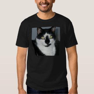 Paco o gatinho tshirts