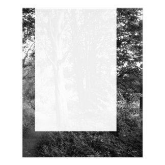 Painel 013 - Nas madeiras Panfletos
