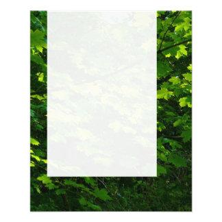 Painel 039 - Folhas do verão Panfleto Personalizado