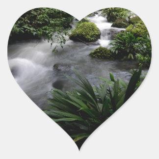 Paisagem Amazon do rio do córrego da selva Adesivo Coração