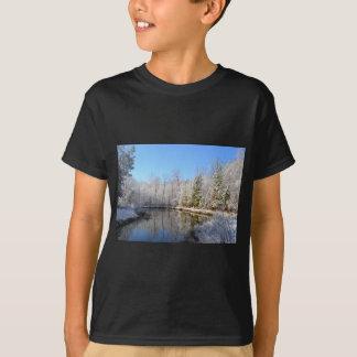 Paisagem coberto de neve em torno da lagoa camiseta