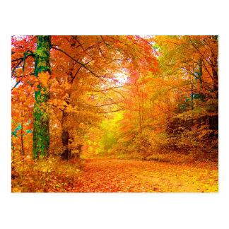 Paisagem da natureza do outono de Vermont Cartao Postal
