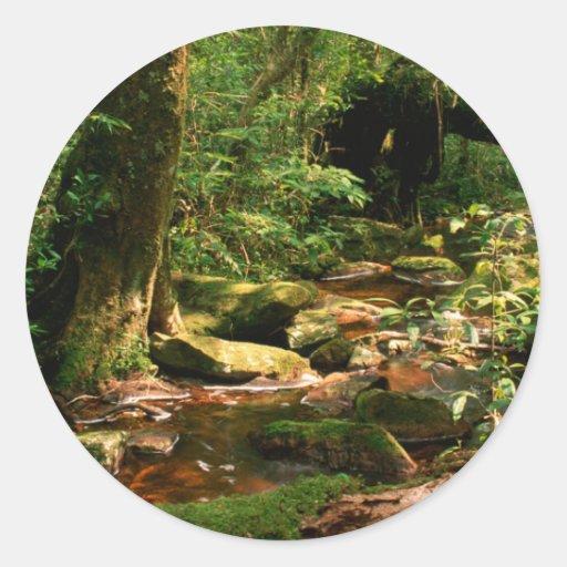 Paisagem do córrego da selva da floresta húmida adesivo em formato redondo