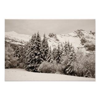 Paisagem do inverno impressão de foto