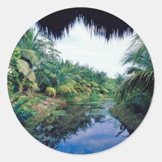 Paisagem do rio da selva de Amazon Adesivo