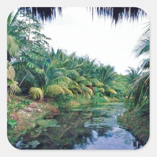 Paisagem do rio da selva de Amazon Adesivo Em Forma Quadrada