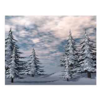 Paisagem dos abeto do inverno cartão postal