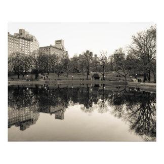Paisagem preta & branca no Central Park Impressão Fotográfica