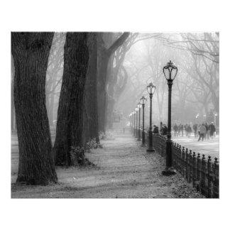Paisagem preta & branca no Central Park Impressão De Foto