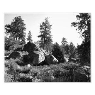 Paisagem preto e branco 14 foto artes