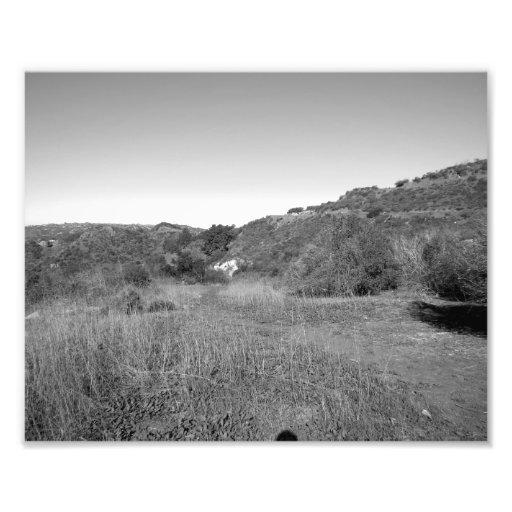 Paisagem preto e branco 19 fotos