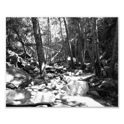 Paisagem preto e branco 23 impressão de fotos