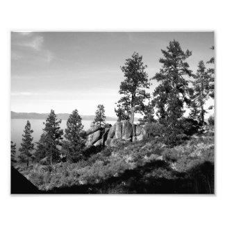 Paisagem preto e branco 8 arte de fotos