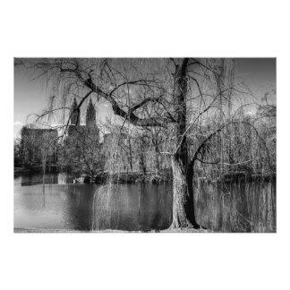 Paisagem preto e branco de New York do Central Par Foto Artes