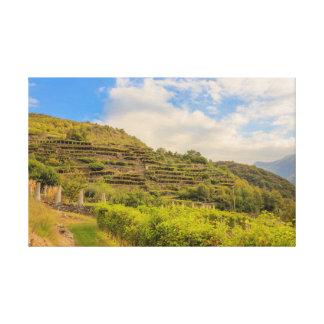 paisagem viticultural de canvas de Carema