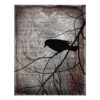 Palavras do corvo impressão de foto