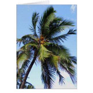 Palma de coco cartão