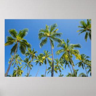 Palmas de coco, Pu'uhonua o Honaunau 2 Poster