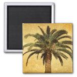 Palmeira do vintage - modelo personalizado tropica imã de geladeira