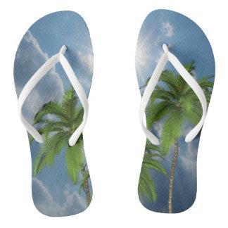 Palmeira dos chinelos