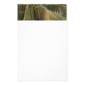 Palmeira Papéis Personalizados
