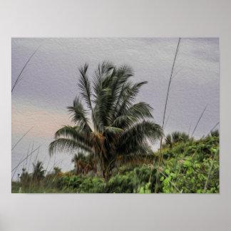 Palmeira selvagem que funde no poster do vento