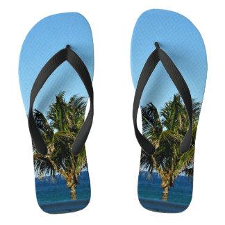 Palmeira sobre o oceano chinelos