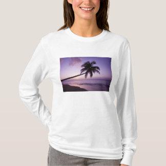Palmeira solitária no por do sol, praia 2 do camiseta